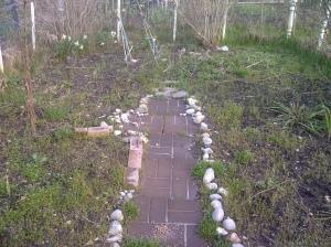 Invited DIY | Garden