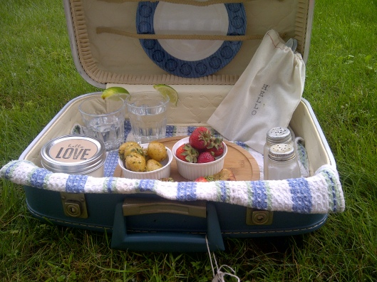 DIY Picnic Suitcase 3 | Invited DIY